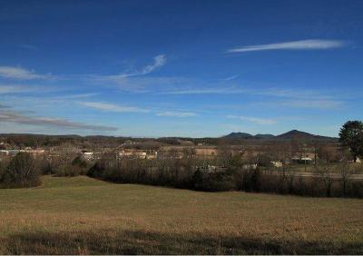 Tellico Plains Residential Lots & Land For Sale: 1 Hwy 68