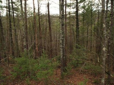 Tellico Plains Residential Lots & Land For Sale: 1 Nichols Branch Rd.