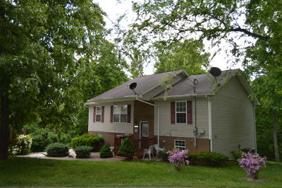 Strawberry Plains Single Family Home For Sale: 713 Duvall Court