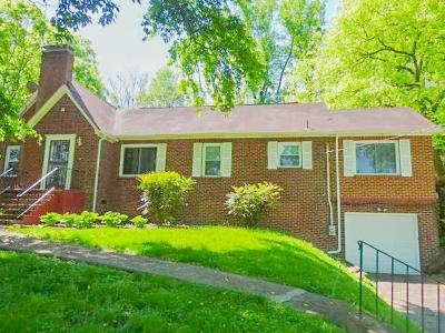 Knoxville Single Family Home For Sale: 5004 Holston Drive