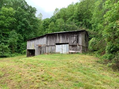 Sevier County Residential Lots & Land For Sale: 4301 Evans Chapel Rd
