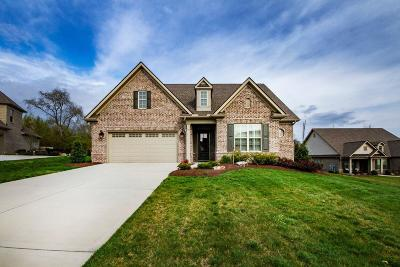 Knoxville Single Family Home For Sale: 619 Briarstone Lane