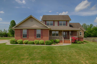 Maryville Single Family Home For Sale: 937 Carter Springs Drive
