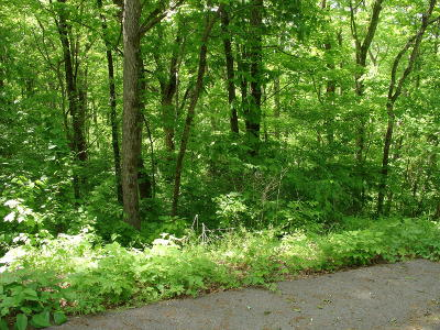 Kodak Residential Lots & Land For Sale: Farmers Mountain Lane
