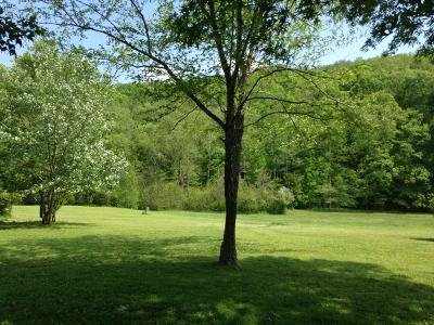 Lenoir City Residential Lots & Land For Sale: 5039 Hines Valley