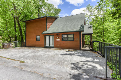 Gatlinburg Single Family Home For Sale: 1069 Lower Alpine Way