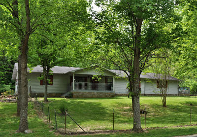 Sevierville Single Family Home For Sale: 430 Lane Hollow Rd