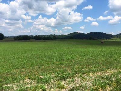 Jefferson City Residential Lots & Land For Sale: Lots 1 & 2 E Dumplin Valley Rd