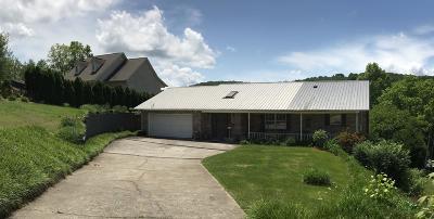 Single Family Home For Sale: 233 Arrowhead Tr