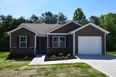 Knoxville Single Family Home For Sale: 412 Contentment Lane