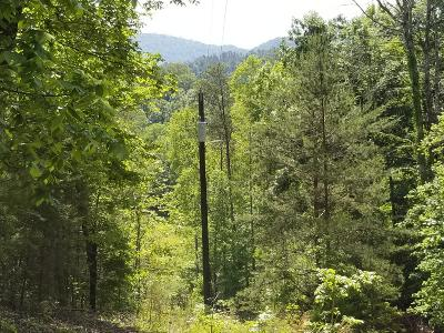 Maryville Residential Lots & Land For Sale: 6835 Four Mile Rd