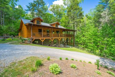 Tellico Plains Single Family Home For Sale: 165 Holder Cemetery