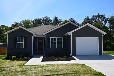 Knoxville Single Family Home For Sale: 418 Contentment Lane