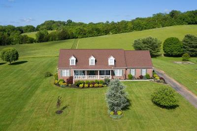 Strawberry Plains Single Family Home For Sale: 1246 Big Bend Rd