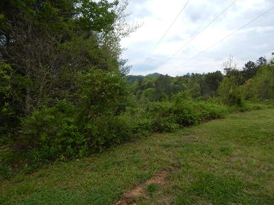 Sevier County Residential Lots & Land For Sale: 3425 Jason Place