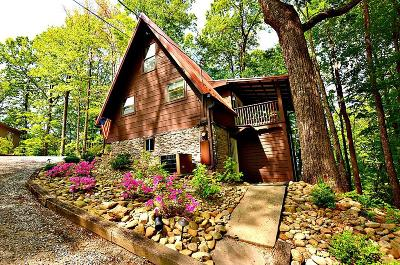 Gatlinburg Single Family Home For Sale: 1235 N Baden Drive