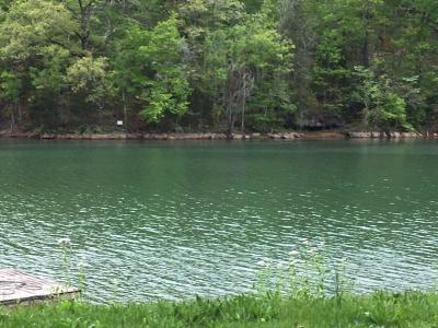 Campbell County Residential Lots & Land For Sale: Lot 15 Harbor Lane