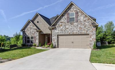 Knoxville Single Family Home For Sale: 11334 Orvis Lane