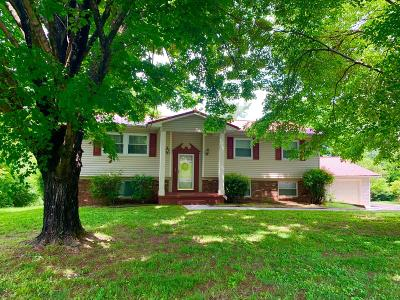 Knoxville Single Family Home For Sale: 209 Elkmont Rd