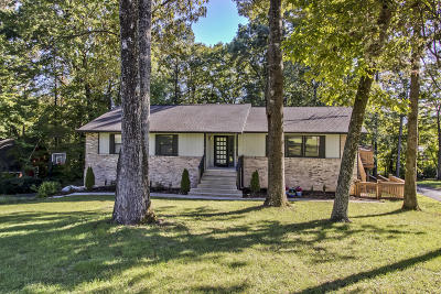 Oak Ridge Single Family Home For Sale: 110 Hendrix Drive