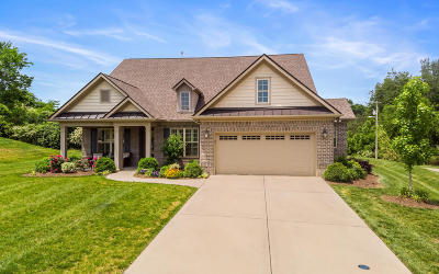 Knoxville Single Family Home For Sale: 615 Briarstone Lane