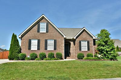 Knoxville Single Family Home For Sale: 1724 Apple Grove Lane