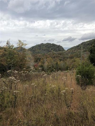 Tellico Plains Residential Lots & Land For Sale: Lot 3 Lick Creek