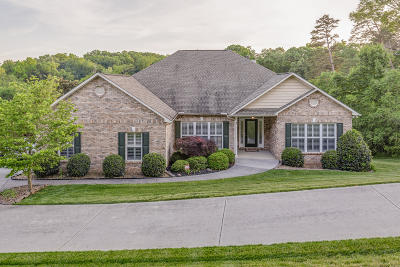 Knoxville Single Family Home For Sale: 2223 White Frye Lane