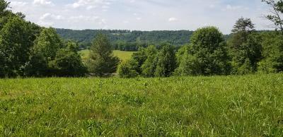 Seymour Residential Lots & Land For Sale: 2148 Kings View Loop