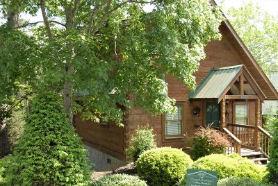 Pigeon Forge Single Family Home For Sale: 3203 Steeple Way #4
