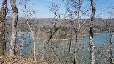 Anderson County, Campbell County, Claiborne County, Grainger County, Union County Residential Lots & Land For Sale: Bullen Valley (220 Acres) Rd