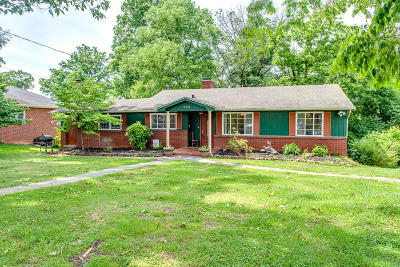Knoxville Single Family Home For Sale: 225 W Ford Valley Rd