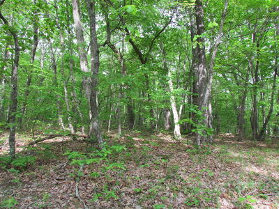 Fairfield Glade Residential Lots & Land For Sale: 112 Folkstone Rd