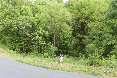 Sevierville Residential Lots & Land For Sale: Matthews Hollow Rd
