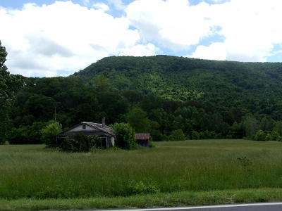 Hawkins County Residential Lots & Land For Sale: 3220 Beech Creek Rd