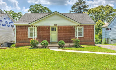 Knoxville Single Family Home For Sale: 2922 Gaston Ave