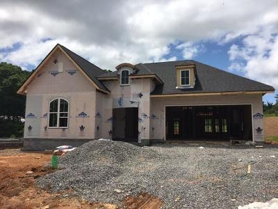 Knoxville Single Family Home For Sale: Loggerhead (Lot 9) Lane