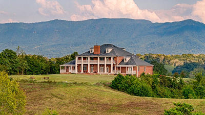 Sevierville Single Family Home For Sale: 3044 Sims Rd