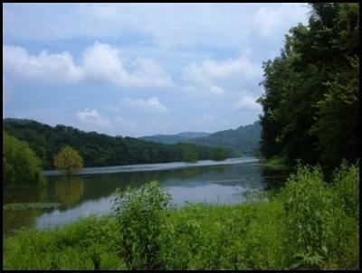 Claiborne County Residential Lots & Land For Sale: Long Beard Lane