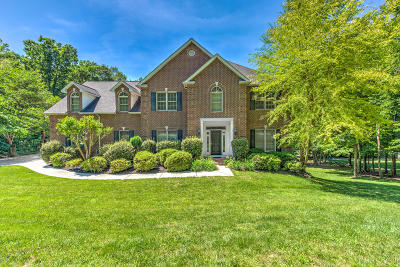 Anderson County Single Family Home For Sale: 221 Andorra Lane