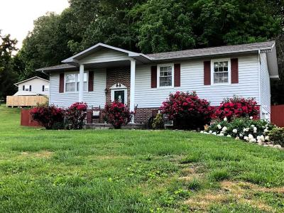 Anderson County Single Family Home For Sale: 202 Tusculum Drive