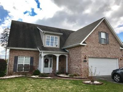 Single Family Home For Sale: 2910 Timber Green Lane