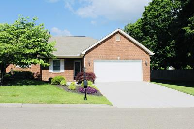 Single Family Home For Sale: 3345 Maple Grove Way