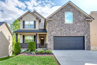 Knoxville Single Family Home For Sale: 1453 Yarnell Station Blvd