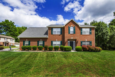 Knoxville Single Family Home For Sale: 1517 Silverdale Lane