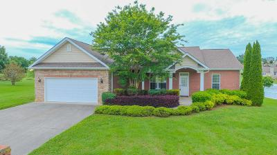 Sevierville Single Family Home For Sale: 2205 Bryson Court