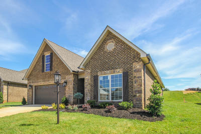 Maryville Single Family Home For Sale: 113 Medinah Circle