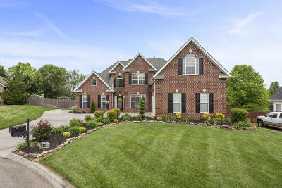 Knoxville Single Family Home For Sale: 2534 Silver Grass Lane