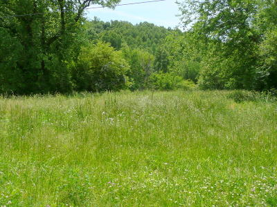 Sweetwater Residential Lots & Land For Sale: Brunner Rd