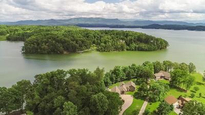 Dandridge, Sevierville Single Family Home For Sale: 1174 Lake Ridge Drive
